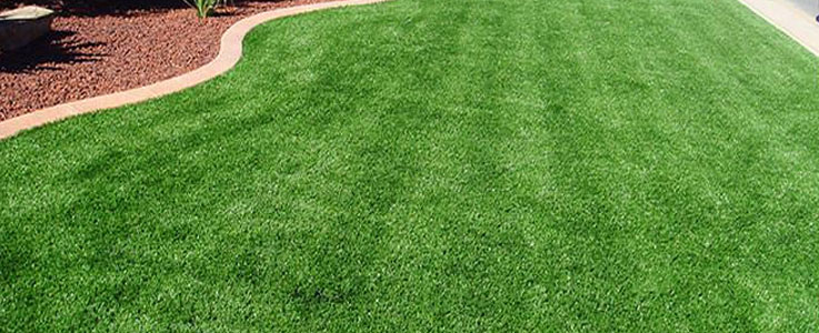 Lawn, Grass Turfing and Turf Installation